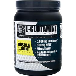NEW WHEY NUTRITION L-Glutamine with MSM 554 grams