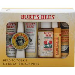 Burt's Bees Head-to-Toe Starter Kit 1 kit