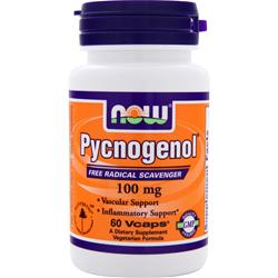 NOW Pycnogenol (100mg) 60 vcaps