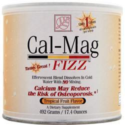 BAYWOOD Cal-Mag FIZZ Tropical Fruit Flavor 492 grams