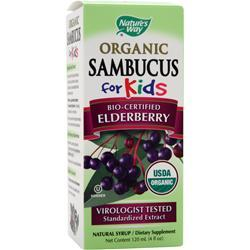 NATURE'S WAY Sambucus for Kids Bio-Certified Elderberry - Organic Best by 11/30/14 4 fl.oz