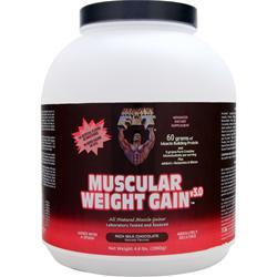 HEALTHY N FIT Muscular Weight Gain Rich Milk Chocolate 4.4 lbs