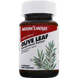 NATURE'S HERBS Olive Leaf - Standardized Extract 30 caps
