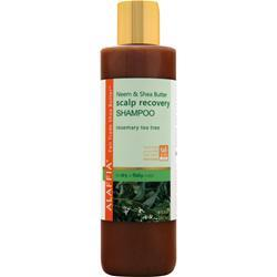 ALAFFIA Neem & Shea Butter Scalp Recovery Shampoo Rosemary Tea Tree 8 fl.oz