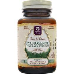 Genesis Today Pycnogenol - Pine Bark Extract 60 vcaps