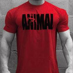 UNIVERSAL NUTRITION Animal T-Shirt Red - XX LRG 1 shirt