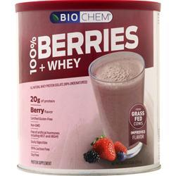 Biochem 100% Berries & Whey Berry 1.39 lbs