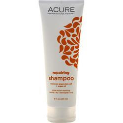 Acure Shampoo Moroccan Argan Cell + Oil 8 oz